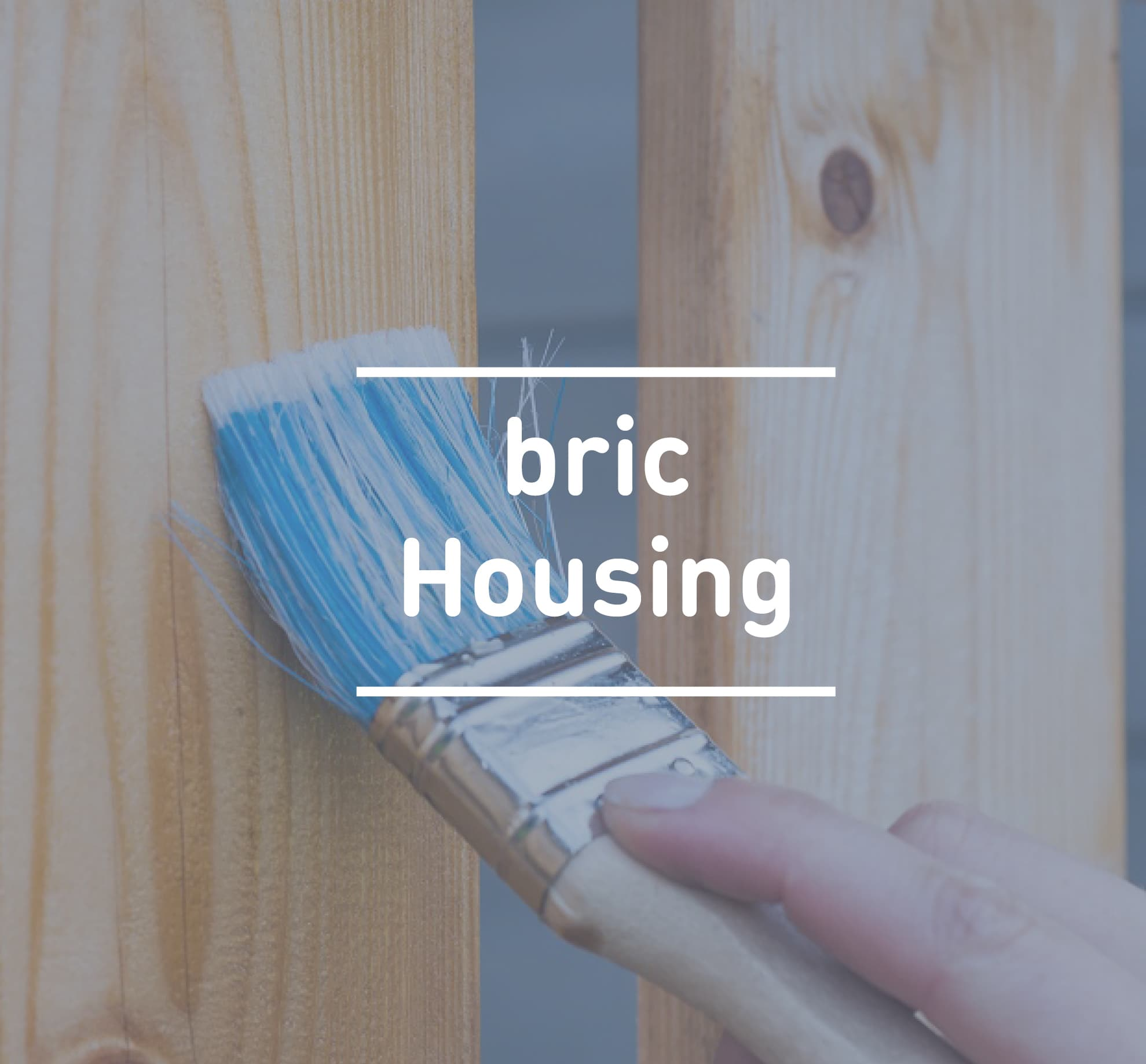 bric Housing | Open Minds