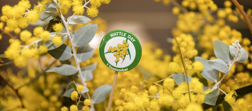 My Wattle Day - Celebrating Australia, its people, and the roots of Open Minds